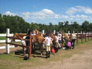 standing stalls